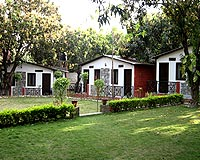 Cottages with Lawn
